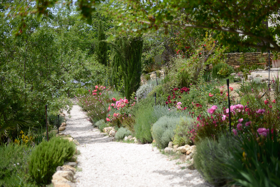 LA ALCANTARILLA - Flower bordered path